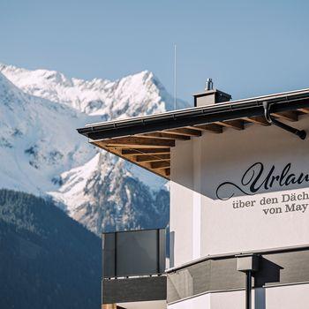 Platzhirsch in Mayrhofen